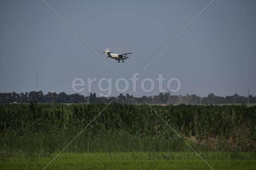 Aircraft agricultural aviation AN-2. The spraying of fertilizers and pesticides on the field with th