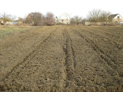 Disc harrow plow the garden. Private infield. Caring for the soil. Preparation for sowing
