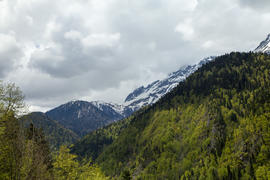 Mountains are covered with snow and the wood and surrounded with clouds