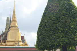 The beautiful Buddhist temple is pleasing to the eye of visitors and parishioners